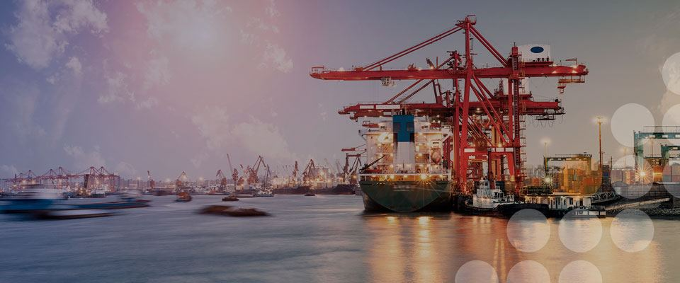 Freight forwarding & multimodal transportation